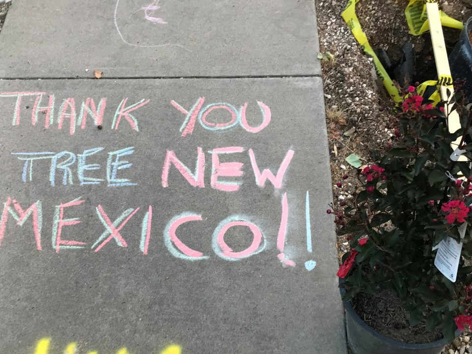Thank You from Tree New Mexico