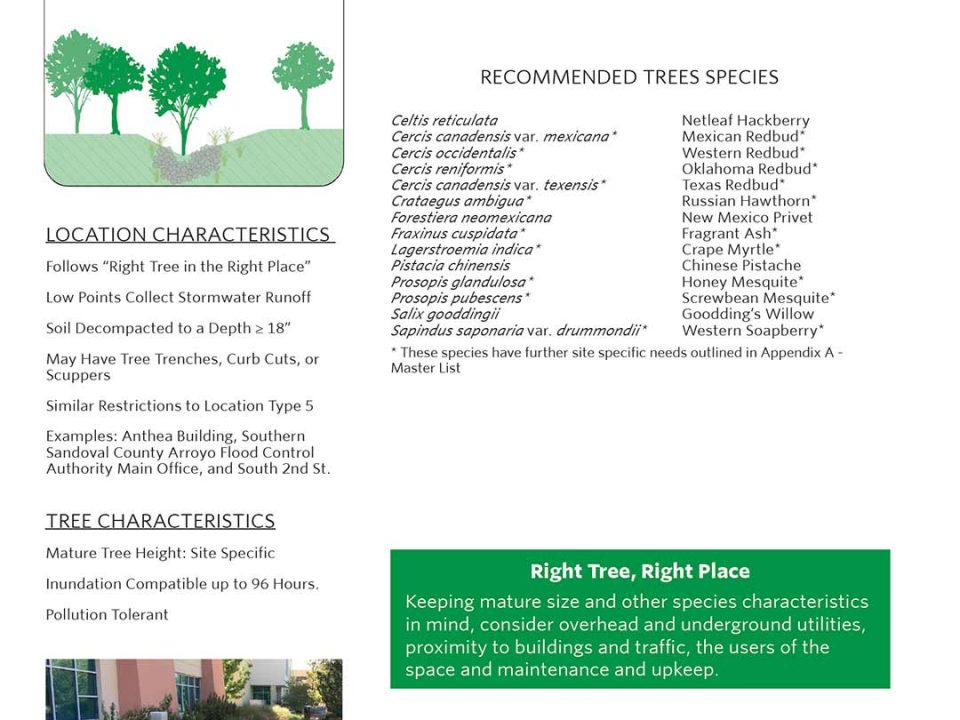 Climate Ready Trees Albuquerque Location 1